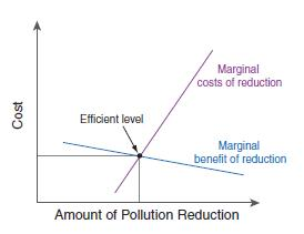 Figure 1 Efficient level of pollution control.