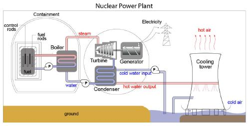 "Figure 3 A typical nuclear reactor has several primary components. Inside the reactor ""core"" are the fuel rods, the control rods, the moderator, and the coolant. Outside the core are the turbines, the heat exchanger, and the main cooling system."