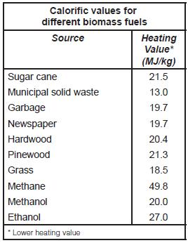 Table 1 Calorific values for different biomass fuels.