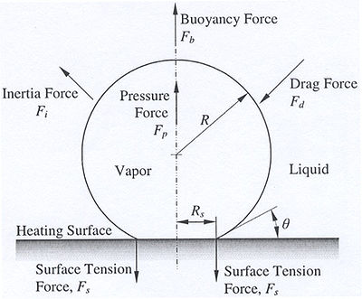 Forces acting on a vapor bubble growing on a heating surface
