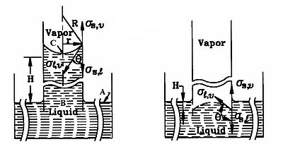 Capillary phenomenon in an open tube (Faghri, 1995; Reproduced by permission of Routledge/Taylor & Francis Group, LLC)