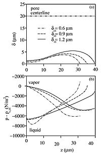 Variation of characteristics of the liquid-vapor interface along the cylindrical channel